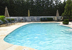 swimming pool at rental home in Cape May NJ